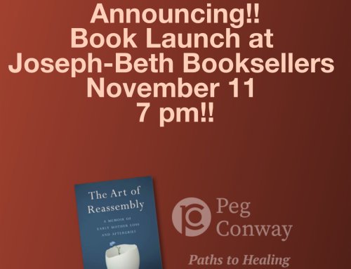 EVENT: In-Person Book Launch on November 11!